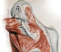 Síndrome de Dolor Miofascial (SDM)