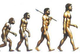 Alimentación evolutiva ¿Por qué sientan mejor unas cosas que otras?
