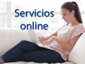 servicios-online-img
