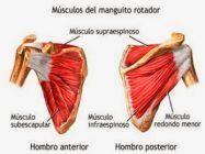 Manguito Rotador: lesiones más frecuentes