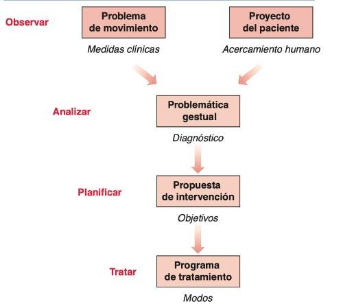 ergoterapia